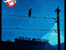 72 «Мокрые Крылья /RAN112CD/», 2013 (Rap-A-Net)