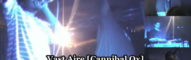 Vast Aire [Cannibal Ox] • Live In Moscow • DVD «Хип Хоп В России № 3» 2006