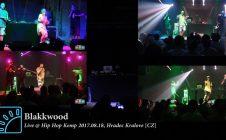 Blakkwood • Live @ #HipHopKemp2017.08.18, Hradec Kralove [CZ] #HHK2017